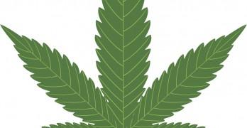 Marijuana legalization presses on amid concerns