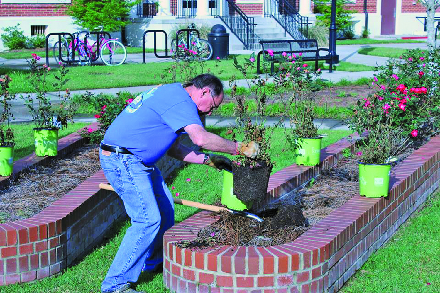 (Bottom photo) Members of the church spruced up flower beds on the campus of the University of Louisiana-Lafayette.