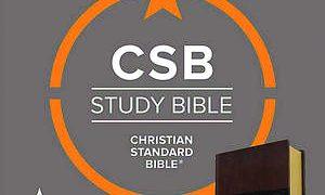 NOBTS professor detects Calvinistic tilt in study notes of LifeWay's new Bible (CSB)